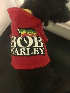 A personal favorite from my Etsy shop https://www.etsy.com/listing/491909410/bob-marley-dog-hoodie-small-dog-hoodie