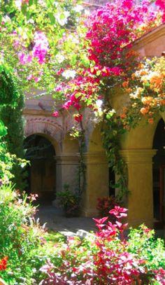 Colorful courtyard in Oaxaca, Mexico • photo: Chris Christensen on SmugMug