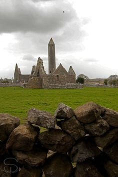 Kilmacduagh monastery and round Tower. Gort, Co. Galway