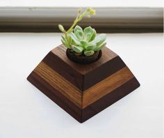 Hey, I found this really awesome Etsy listing at https://www.etsy.com/listing/240270313/geometric-sapele-and-white-oak-wooden