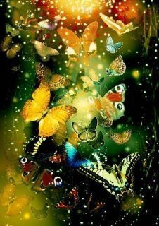 Some of my favorite butterfly images! Butterfly Effect, Butterfly Kisses, Butterfly Art, Butterfly Painting, Butterflies Flying, Beautiful Butterflies, Beautiful Birds, Simply Beautiful, Beautiful Images