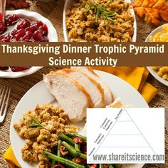 Use the idea of a trophic pyramid to visualize where humans eat on the food chain with this easy Thanksgiving Trophic Pyramid science activity. A great fun way to learn some ecology on those crazy days before the Thanksgiving holiday. Preschool Science Activities, Science Experiments, Thanksgiving Activities, Thanksgiving Holiday, Nature Scavenger Hunts, Crazy Day, Early Learning, Pumpkin, Dinner