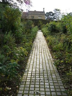 I want to do a spacious brick path