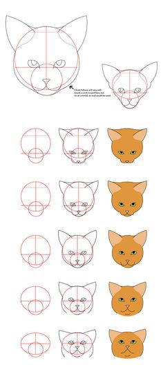 Drawing Lessons, Drawing Techniques, Animal Sketches, Animal Drawings, Dog Drawing Tutorial, Drawing Tutorials, Cat Face Drawing, Drawing Art, Cat Anatomy