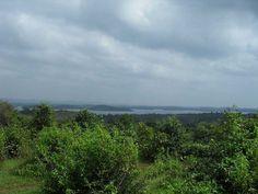 Gudavi Bird Sanctuary - in Karnataka,India