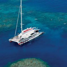 Passions of Paradise Cairns Day Tour http://bit.ly/1SZHYZQ #snorkelling #greatbarrierreef #seeaustralia #backpacking #travel #wanderlust