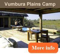 Vumbura Plains Camp and Little Vumbura Camp