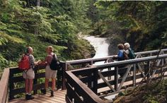 Little Qualicum Trail