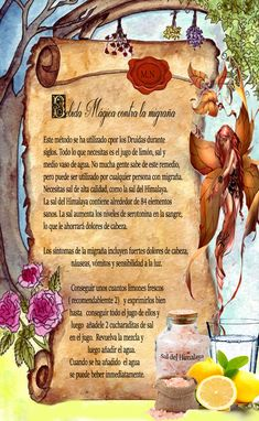 Trastos de Bruja: Bebida mágica contra la migraña Wiccan Spells, Witchcraft, Biology Drawing, Elf Magic, Book Of Shadows, Reiki, Spelling, Tarot, Fun Facts