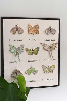 How To Make Map Paper Moths Art Map Crafts, Glue Crafts, Map Artwork, Heart Map, Paper Vase, Funky Junk Interiors, Heart Ornament, Crafty Projects, Diy