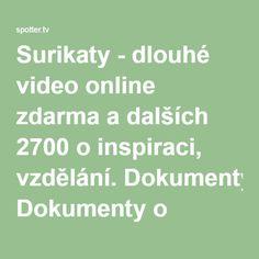 Surikaty - dlouhé video online zdarma a dalších 2700 o inspiraci, vzdělání. Dokumenty o přírodě, technice a civilizaci. S českými titulky a popisem.