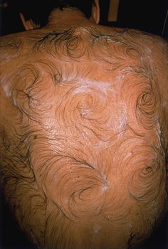 "Mona Hatoum, Van Gogh's Back 1995 Photograph, colour, on paper, 600 x 403 mm ""[...] photograph of a man's hirsute back, the hair soaped and wetted and swirled into patterns which suggest the brushstrokes in Van Gogh's paintings."""