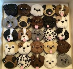 puppy cupcakes for kids . puppy cupcakes for dogs . puppy cupcakes for dogs easy . puppy cupcakes for kids easy . puppy cupcakes for dogs birthdays . Puppy Cupcakes, Puppy Cake, Animal Cupcakes, Cupcake Cookies, Cupcakes Bonitos, Cupcakes Decorados, Cupcake Day, Puppy Birthday, Puppy Party