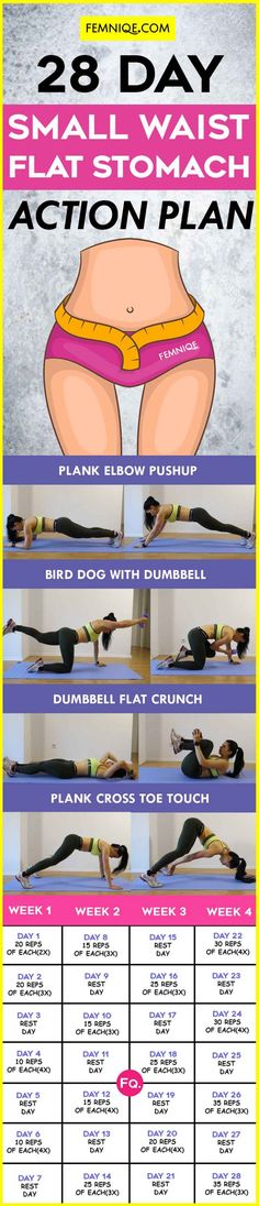 28 day small waist flat stomach action plan | Posted By: NewHowToLoseBellyFat.com