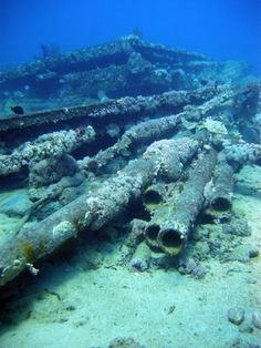 Thistlegorm shipwreck diving site - Ras Mohamed National Park, Egypt is situated at the extreme southern part of the Sinai Peninsula where the Gulf of Aqaba meets the Gulf of Suez.