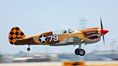 Curtis P-40 Fighter