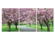This Pretty Spring in Bloom Mounted Photography Print Triptych is sure to brighten any mom's day.