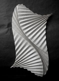 This fold creates a sense of movement in a material that you would usually see as stiff- the curve folds really brings life into a piece of paper Paper Folding Art, Paper Cutting, Paper Art, Paper Crafts, Origami And Kirigami, Origami Paper, Oragami, Andrea Russo, Folding Architecture