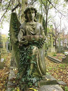 Cemetery Angel being covered in ivy