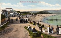 """Esplanade St. Clair, Dunedin, N.Z. Postcard from the Latest """"Scenic"""" Series ~ 105755. Printed in Germany."""