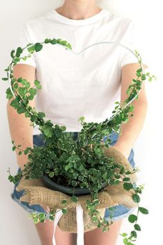 12 DIYs of Christmas Make a Heart Planter Present To give or keep? Make this DIY Heart Planter as a gift using an easy indoor plant to care for like this creeping fig Fig Plant Indoor, Indoor Plants, House Plants Decor, Plant Decor, Diy Trellis, Arte Floral, Hanging Plants, Garden Pots, Houseplants