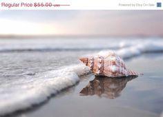 Sea Shell Art- Beach Photography Home Decor Nautical Beach Home Decor Photo Seascape Seashell Photo 12x18. by BreeMadden via Etsy. #fpoe