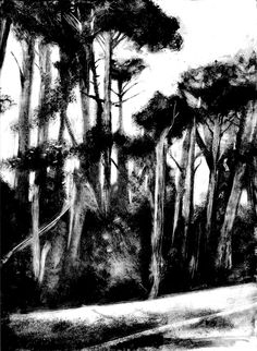 Discover truly amazing art and artworks from artists around the world. Monochromatic Art, Ciel Nocturne, Nature Sketch, Illustration Art, Illustrations, Black And White Painting, Printmaking, Amazing Art, Landscape Paintings