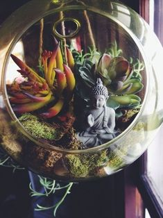 ggypsychedelicc:  I want to make my own little terrarium or zen garden, they're so cute!