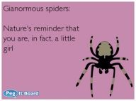 Ginormous spiders:  Nature's reminder that you are, in fact, a little girl!!