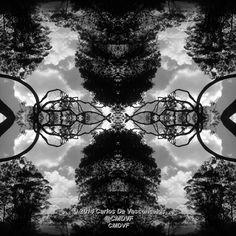 Armonía de Árboles. 2/4. Carlos De Vasconcelos. CMDVF. #CarlosDeVasconcelos #CMDVF #Diseño #Ilustración #Arte #Artista #BlancoyNegro #Armonía #Árboles / #Design #Illustration #Art #ArtWork #Artist #BlackAndWhite #bw #bnw #Harmony #Trees Black And White, Illustration, Design, Blanco Y Negro, Artists, Art, Illustrations, Design Comics, Black N White