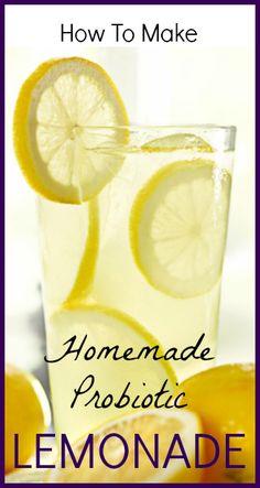 Probiotic Lemonade Recipe - SeedsOfRealHealth.com