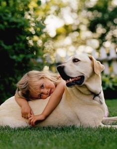 White dog with a little child