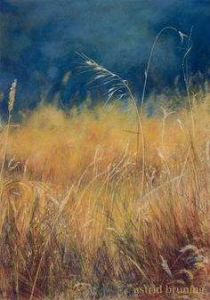 Summer Weed - Pastel Painting by Astrid Bruning