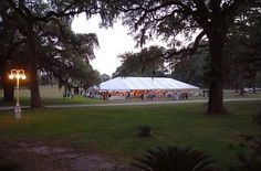 Beautiful wedding reception on the front lawn.