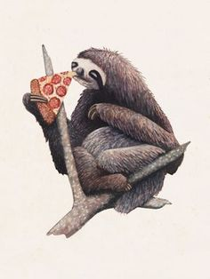 Pizza Sloth