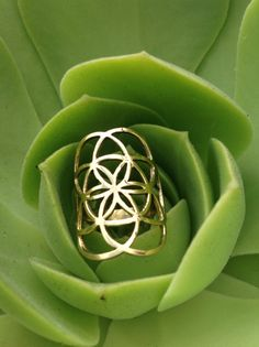 Hey, I found this really awesome Etsy listing at https://www.etsy.com/listing/150751345/seed-of-life-galactivated-ring-flower-of