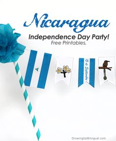 Hispanic Heritage Month: Nicaragua party printables for celebrating Nicaragua's Independence! Party Printables, Free Printables, Independence Day Wallpaper, Hispanic Heritage Month, Cake Banner, Welcome To The Party, American Country, Girl Scouts, Cards