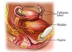 Neurogenic bladder is abnormal bladder function caused by a nerve problem.