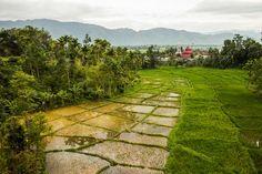 Kerinci Seblat National Park, Sumatra highest peak, home of Sumatran tigers.
