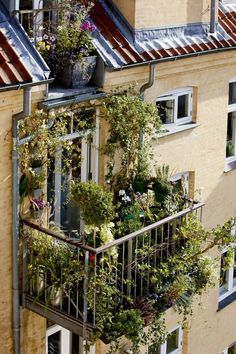Having a rooftop that can be utilized as garden is a blessing. Rooftop garden design varies widely depending on available space as well as your building Apartment Balcony Garden, Small Balcony Garden, Porch And Balcony, Balcony Plants, Apartment Balconies, Rooftop Garden, Balcony Ideas, Balcony Gardening, Balcony Railing