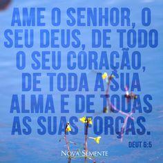 Nova Semente - Frases da Bíblia - Versículos -Deus - Deuteronômio 6:5