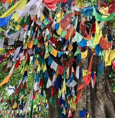 Guide til Lumbini - Buddhas fødested - Rundtekvator