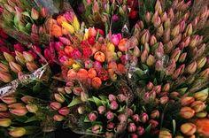 Flores para regalar a mamá este 10 de mayo