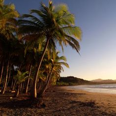 Beach + Rainforest: Guanacaste, Costa Rica perfect combination