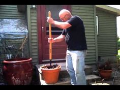 What Everybody Ought to Know About Container Garden Soil