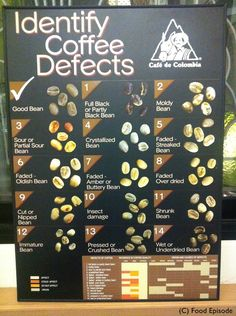 How many types of coffee bean do you know?