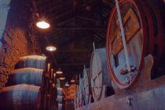 Wine City - Porto TourLe vin - Porto TourVínico - Porto TourVínico - Porto TourVínic - Porto Tour - THE CITY TAILORS