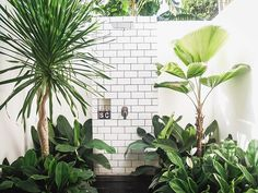 How fantastic is this outdoor shower? It's of @fellavillas in Bali and a part of my post on the blog today with Guest Nerd Sheila of the beautiful blog @baliinteriors . Sheila is a photographer and blogger who moved to Bali with her partner and two kids and she has a passion for interior design that rivals my own! Today on House Nerd she shares her fave most inspiring Balinese places - as well as tips on how to get these interior styles at home in Australia (even without a holiday planned...