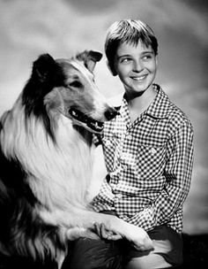 Lassie and Jeff (circa 1954) with Tommy Rettig. A beautiful dog and a boy most little girls of the time fell in love with.