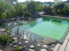 Schwimmteich gebaut von Teichbau Schweiz